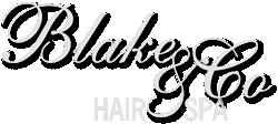 Blake and Co Hair Spa
