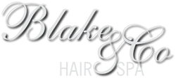 Blake and Co Hair Spa