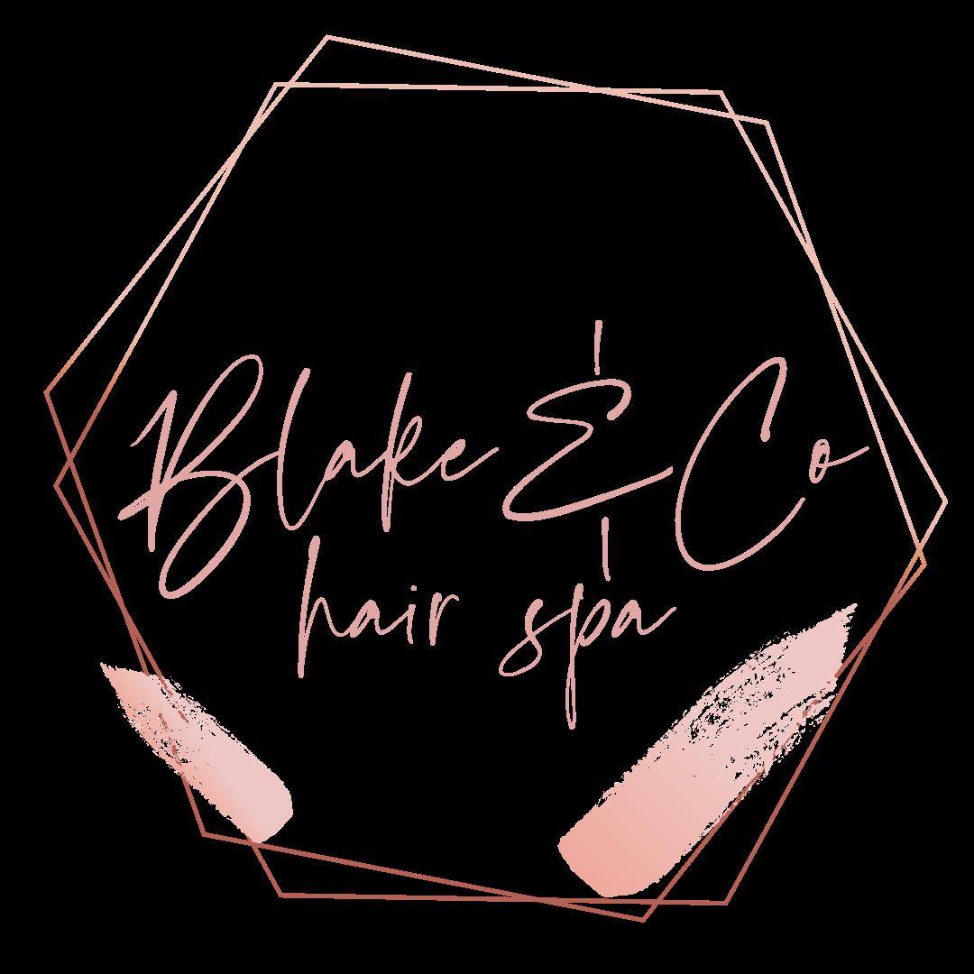 Blake & Co Logo